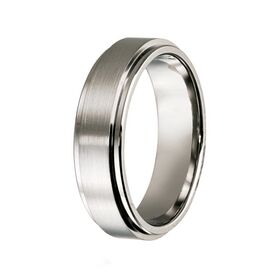 Titanium with Raised Centre Wedding Band (7mm)